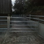 Cattle handling system's holding pens