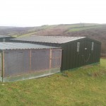Pheasant rearing house and shelter pen on raised bed