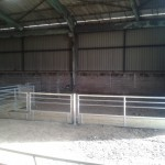 Sheep 30ft x 25ft feeding pen