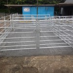 Sheep penning (9ft x 12ft loading bay)